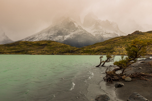 Beautiful scenery in Torres del Paine National Park, Patagonia, Chile, South Americaの写真素材 [FYI03795744]
