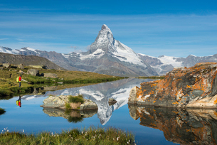 A walker hiking in the Alps takes in the view of the Matterhorn reflected in Stellisee lake at dawn,の写真素材 [FYI03795768]