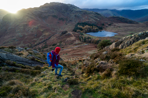 A woman hiking from Lingmoor Fell descends to Blea Tarn and Great Langdale in the Lake Distirct Natiの写真素材 [FYI03795802]