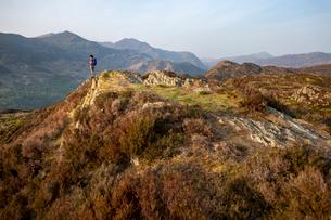 A woman trekking in Snowdonia walks across the top of Mynydd Sygun near Bedgellert with views of Mouの写真素材 [FYI03795804]