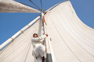 An Egyptian man climbs the mast of a traditional Felucca sailboat with wooden masts and cotton sailsの写真素材 [FYI03795819]