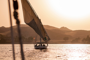 A traditional Felucca sailboat with wooden masts and cotton sails at sunset on the River Nile, Aswanの写真素材 [FYI03795821]