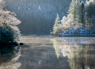 A hoar frost and transient mist over Loch Ard in the Loch Lomond and the Trossachs National Park inの写真素材 [FYI03795890]