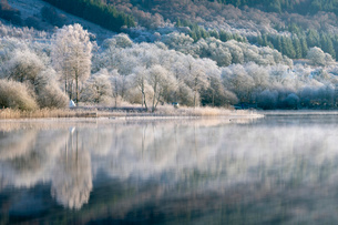Loch Ard partially frozen over and a hoar frost around Aberfoyle in the Loch Lomond and the Trossachの写真素材 [FYI03795895]