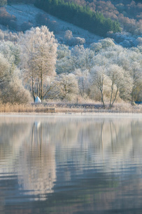 Loch Ard partially frozen over and a hoar frost around Aberfoyle in the Loch Lomond and the Trossachの写真素材 [FYI03795896]