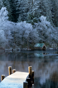 Loch Ard in mid-winter, with hoar frost, Aberfoyle, Loch Lomond and the Trossachs National Park, Stiの写真素材 [FYI03795897]