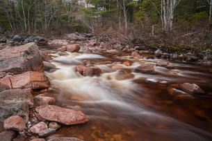 Creek flowing near Mary Ann Falls, Cape Breton Highlands National Park, Nova Scotia, Canada, North Aの写真素材 [FYI03796015]
