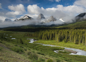 River flowing through the mountains with Mount Engadine and the Tower, Spray Valley Provincial Park,の写真素材 [FYI03796021]