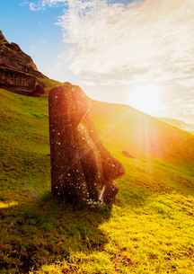 Moai at the quarry on the slope of the Rano Raraku Volcano at suNoise, Rapa Nui National Park, UNESCの写真素材 [FYI03796372]