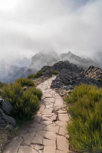 Mist on the mountains of Vereda do Areeiro, the trail that links Pico Ruivo to Pico do Arieiro. Funcの写真素材 [FYI03796522]