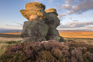 Jenny Twigg and her daughter Tibb, Gritstone rock formations on Fountains Earth Moor, Nidderdale, Noの写真素材 [FYI03796645]