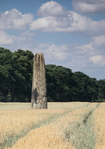 The Devils Arrows, a series of Neolithic Standing Stones near Boroughbridge, North Yorkshire, Yorkshの写真素材 [FYI03796648]