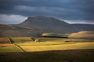 Soft light beneath the flanks of Pen-y-ghent, one of the famous Yorkshire Three Peaks, Yorkshire Dalの写真素材 [FYI03796657]