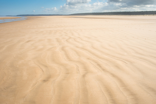 Sandy beach at Holkham Bay on the NoRF-NEolk Coast Path National Trail, NoRF-NEolk, East Anglia, Engの写真素材 [FYI03796690]
