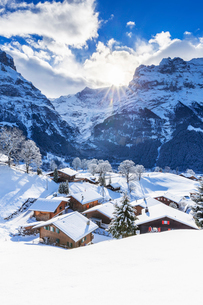 Traditional houses after a snowfall, Grindelwald, Canton of Bern, Switzerland, Europeの写真素材 [FYI03796817]