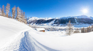 Panoramic view of a winter path with a traditional hut in the winter scenery, Livigno, Valtellina, Lの写真素材 [FYI03796874]