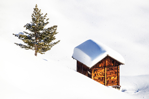 Traditional hut in the winter scenery, Livigno, Valtellina, Lombardy, Italy, Europeの写真素材 [FYI03796880]