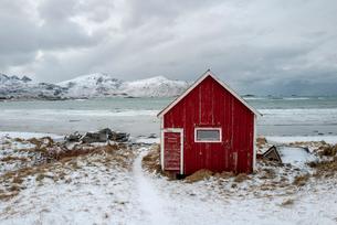 Ramberg, Lofoten, Nordland, Arctic, Norway, Europeの写真素材 [FYI03797146]