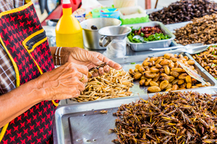 A market stall holder preparing an insect barbecue at Wat Chalong Temple in Phuket, Thailand, Southeの写真素材 [FYI03797345]