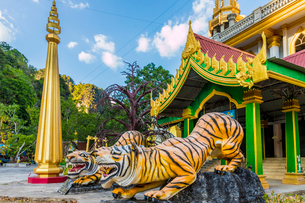 Tiger statues at the Tiger Cave Temple in Krabi, Thailand, Southeast Asia, Asiaの写真素材 [FYI03797450]