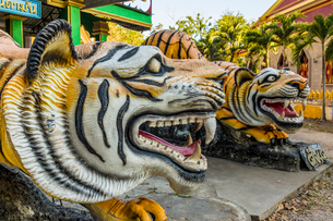 Tiger statues at the Tiger Cave Temple in Krabi, Thailand, Southeast Asia, Asiaの写真素材 [FYI03797451]