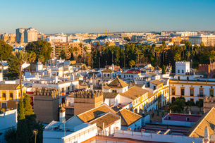 View of the historic center of Seville from the top of the Cathedral of Seville, Seville, Andalucia,の写真素材 [FYI03797523]