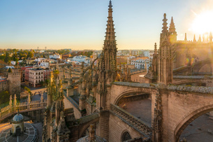 View of the historic center of Seville from the top of the Cathedral of Seville, Seville, Andalucia,の写真素材 [FYI03797525]