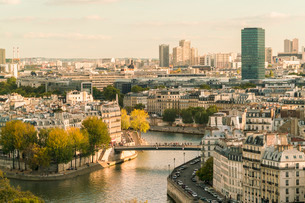 Ile Saint louis and Il de la Cite from Square of Saint-Jacques Tower, Paris, France, Europeの写真素材 [FYI03797676]