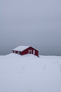 A red house partly buried in snow in winter scene on Lofoten Islands, Arctic, Norway, Europeの写真素材 [FYI03797832]