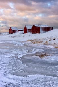 Fresh snow surrounds typical fishermen houses called Rorbu in winter, Eggum, Lofoten Islands, Arcticの写真素材 [FYI03797844]