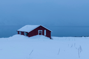 Red house partly buried in snow in winter scene on Lofoten Islands, Arctic, Norway, Europeの写真素材 [FYI03797845]