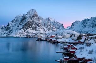 Reine sunrise in winter, Reinefjord, Moskenesoya, Lofoten, Arctic, Norway, Europeの写真素材 [FYI03797851]
