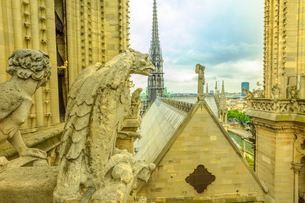 The gargoyles of Notre Dame Cathedral (Our Lady of Paris) and aerial view over the Paris skyline, Paの写真素材 [FYI03798299]