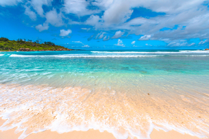 White sandy beach and turquoise clear sea of Anse Cocos, La Digue, Seychelles, Indian Ocean, Africaの写真素材 [FYI03798324]