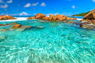 Turquoise sea of natural pool, clear calm waters of swimming pools at Anse Cocos near Grand Anse andの写真素材 [FYI03798332]