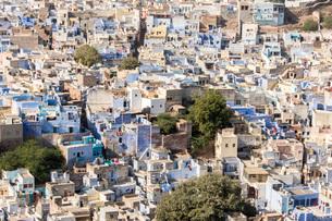 Jodhpur, Blue City (Navchokiya), Rajasthan, India, Asiaの写真素材 [FYI03798454]