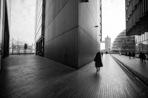 City Hall and Tower Bridge, London, England, United Kingdom, Europeの写真素材 [FYI03798597]
