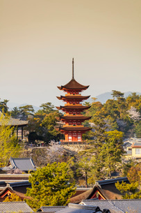 Komyoin five story pagoda, UNESCO World Heritage Site, Miyajima Island, Hiroshima Prefecture, Honshuの写真素材 [FYI03798739]