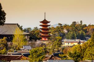 Komyoin five story pagoda, UNESCO World Heritage Site, Miyajima Island, Hiroshima Prefecture, Honshuの写真素材 [FYI03798741]