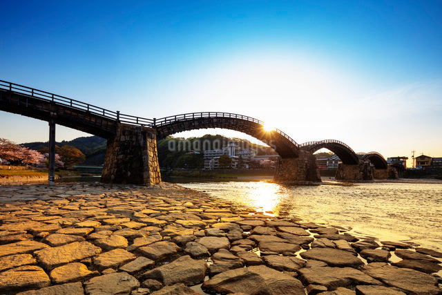 Kintaikyo five arched bridge, Iwakuni, Yamaguchi Prefecture, Honshu, Japan, Asiaの写真素材 [FYI03798751]