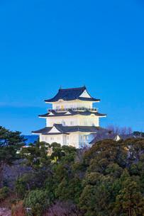 Odawara Castle, Odawara, Kanagawa Prefecture, Honshu, Japan, Asiaの写真素材 [FYI03798757]