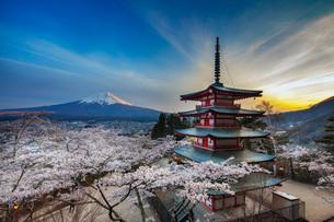 Chureito Pagoda in Arakurayama Sengen Park, Fujiyoshida, Yamanashi Prefecture, Honshu, Japan, Asiaの写真素材 [FYI03798777]