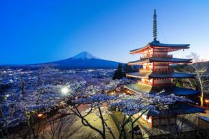 Cherry blossom at Chureito Pagoda in Arakurayama Sengen Park, and Mount Fuji, 3776m, UNESCO World Heの写真素材 [FYI03798781]
