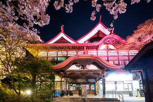 Cherry blossom at Takato Castle, Takato, Nagano Prefecture, Honshu, Japan, Asiaの写真素材 [FYI03798802]