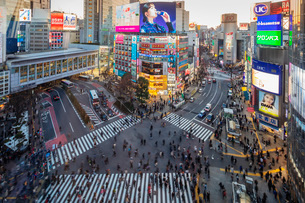 Shibuya crossing, Tokyo, Japan, Asiaの写真素材 [FYI03798818]