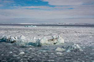 Wahlenberg fjord, Nordaustlandet, Svalbard Islands, Arctic, Norway, Europeの写真素材 [FYI03798862]