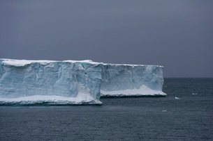 Austfonna ice cap, Nordaustlandet, Svalbard Islands, Arctic, Norway, Europeの写真素材 [FYI03798869]