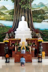 Van Linh Buddhist pagoda, man praying to the Buddha, the Enlightenment of the Buddha statue, An Hao,の写真素材 [FYI03799210]