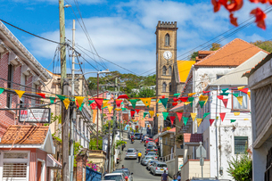 View of Cathedral of the Immaculate Conception in St. George's, Grenada, Windward Islands, West Indiの写真素材 [FYI03799433]