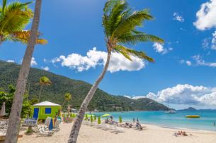 View of Cane Garden Bay Beach, Tortola, British Virgin Islands, West Indies, Caribbean, Central Amerの写真素材 [FYI03799475]